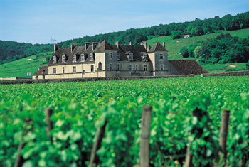 Château du Clos de Vougeot - ADT21©R. GUITON