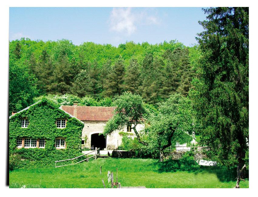 Moulin de st germain - LE MOULIN DE SAINT-GERMAIN©NOUYRIGAT