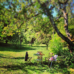 Relax in the garden - Gourmet Cycling Vacations & Accommodation in Burgundy © Hungry Cyclist