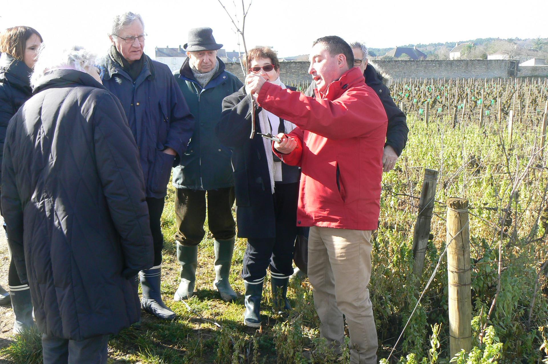 Balades avec l''Atelier de la Vigne et du Vin - Atelier Vigne et Vin Beaune Bourgogne