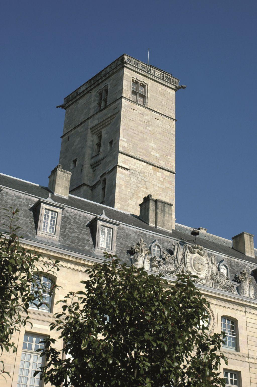 Dijon--Palais-des-Ducs - Atelier Demoulin