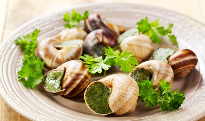 plate of escargots - hélice