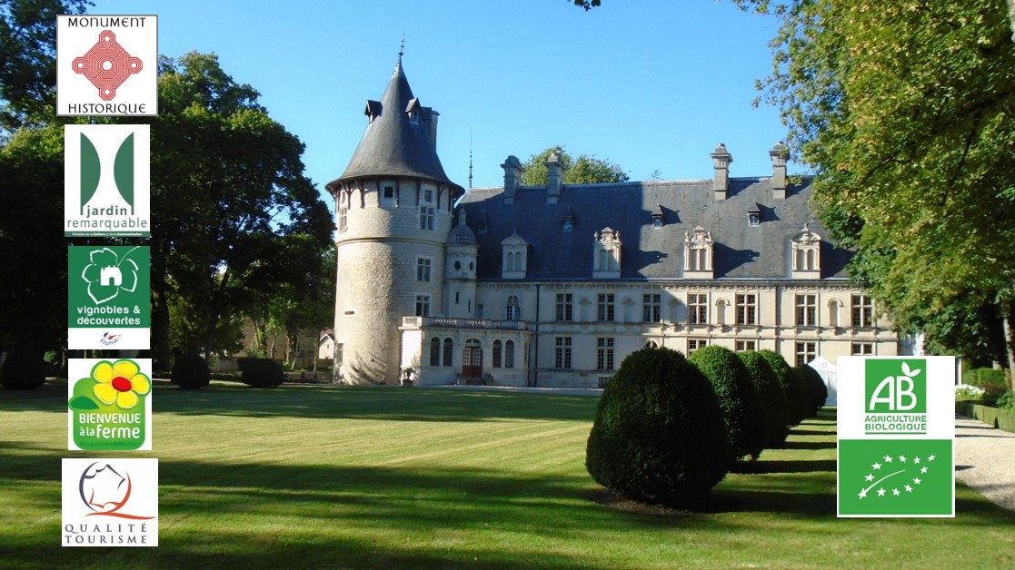 Château de Montigny-sur-Aube - Château de Montigny-sur-Aube