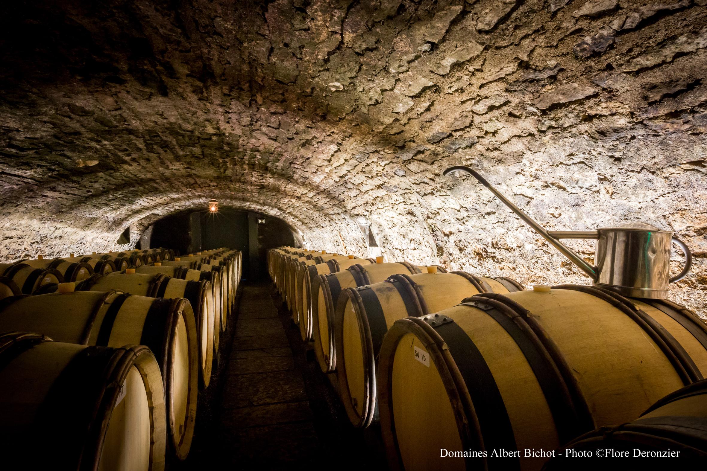 Cave à fûts du Domaine Long-Depaquit à Chablis